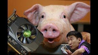 Китайская видеокарта Forsa 1050ti vs Sapphire nitro rx 460