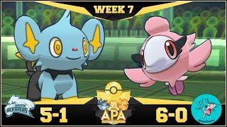DO IT SHINX!! Bronx Beartics vs Sydney Sharpedos APA S4W7! Pokemon Ultra Sun & Moon Wi-Fi Battle