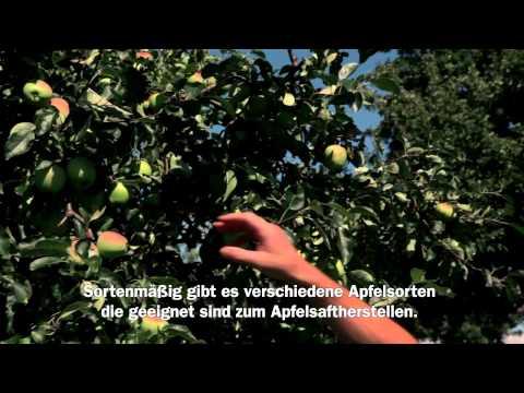 Migros Interview: TerraSuisse Obstanbau