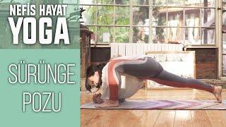 UTTHAN PRISTHASANA | Omurgayı ve Bacak Kaslarını Kuvvetlendiren Duruş | Gözde İle Yoga