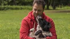 Martin Rütter DOGS - offizieller Imagefilm