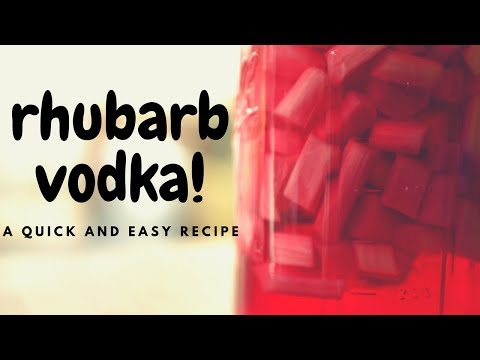 Rhubarb Vodka. Easy Home Infusion!