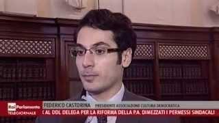 RAI PARLAMENTO - Riforme Istituzionali: i giovani le chiedono