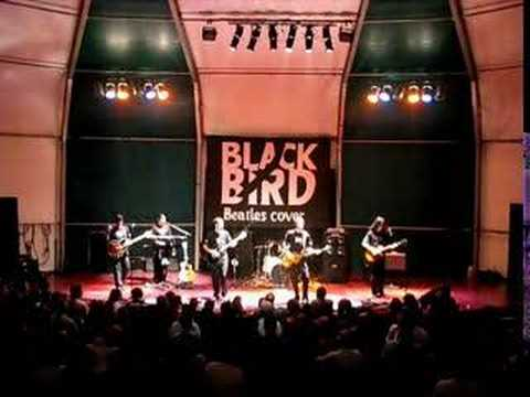 I Am The Walrus - Black Bird Band