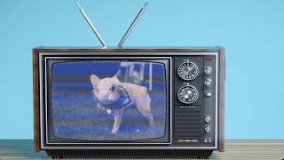Gryffin, Elley Duhé - Tie Me Down TV (Slowed) [1 Hour Loop]
