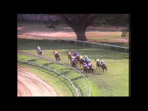 ม้าแข่งชิงถ้วยพลเอกยุทธศักดิ์ ศศิประภา ระยะ 1,840 เมตร[คลิปเต็ม]