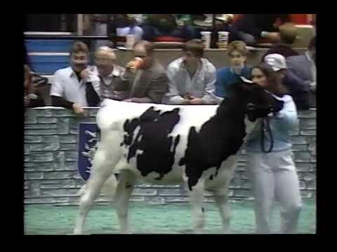 1988 World Dairy Expo