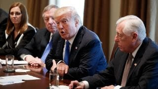 The political cost of tariffs