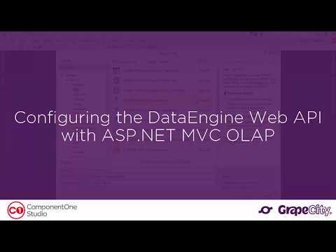 Configuring The DataEngine Web API With ASP.NET MVC OLAP