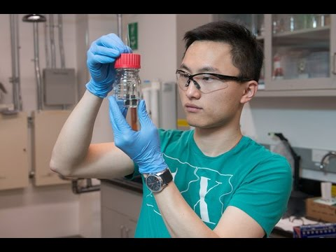 Stanford's Water Splitter produces clean Hydrogen 24/7 using Single-Catalyst