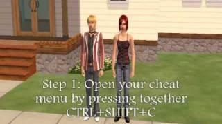 Sims 2 Tutorial: Teen Pregnancy/Woohoo/Marriage Cheat