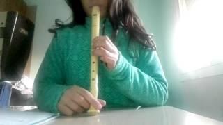 Come suonare un flauto dolce