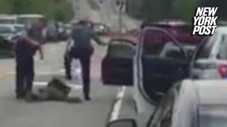 Second cop fired after new video shows him punching suspect   New York Post