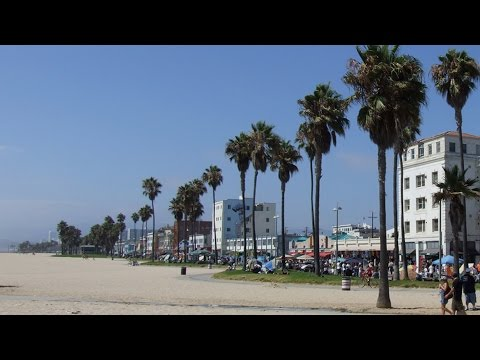 Tech startup boom makes waves in bohemian Venice Beach