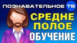 Среднеполое обучение (Познавательное ТВ)