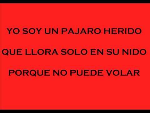 """Rolando Laserie """"Hola Soledad"""" (Karaoke/ letra de cancion)"""