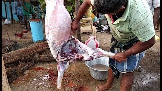 How to cutting a goat bakra in professional style.cut big 30 k.g. goat
