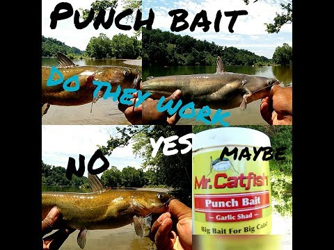 Does Punch Baits Work