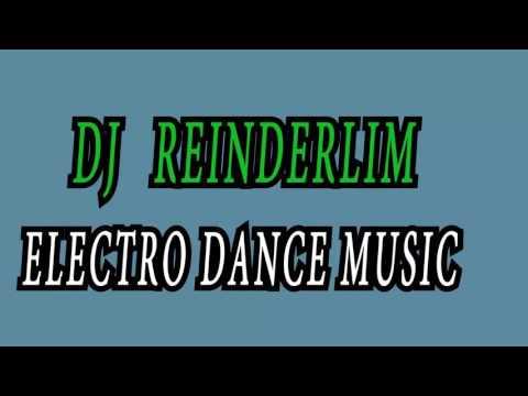 dj reinderlim police remix 2016