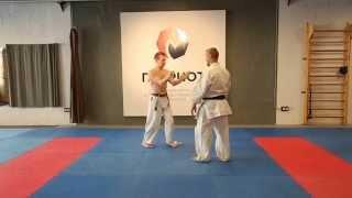 Uechi-ryu karate do / kata Sanchin / explanation / Sanchin kitae