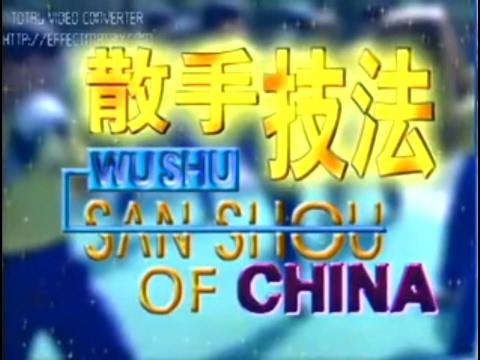 Wushu Sanda of