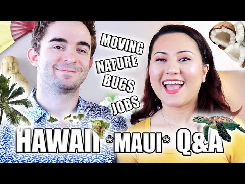REALITY OF LIVING IN HAWAII Q&A | OUR STORY LIVING ON MAUI, MUST KNOW FACTS + MOVING TIPS