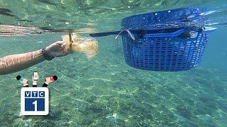 Hành trình 10 năm nhặt rác dưới đáy biển