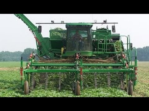 #Amazing Amazing harvesting machines 2016  Amazing agriculture Machinery Farming Technology Modern #