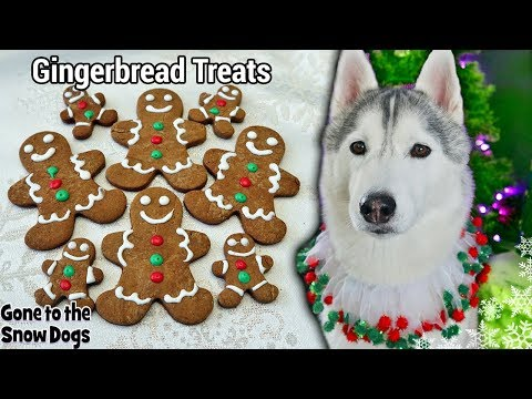Gingerbread Cookies For Dogs | DIY Dog Treats 128  Christmas Dog Treats