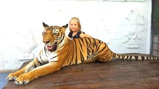 Дети поймали тигра !