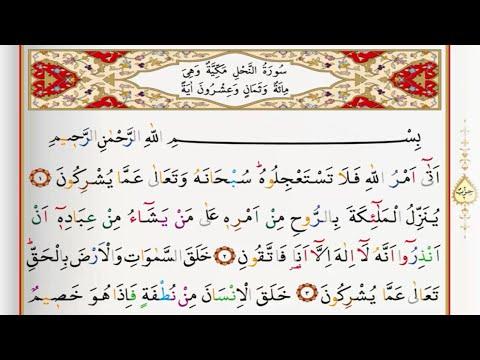 Surah An Nahl - Saad Al Ghamdi surah nahl with Tajweed