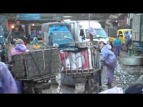 Cho Fish Market Ha Noi Vietnam  Nov 2013