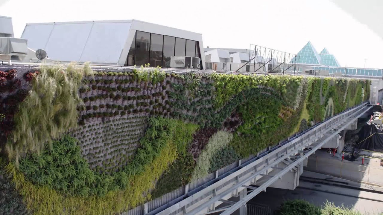 Timelapse largest living wall in north america green - Watch over the garden wall online free ...