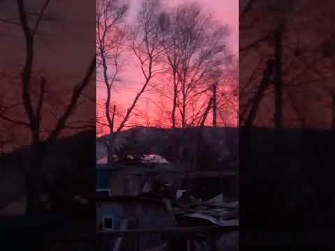 Перед восходом солнца, но солнце так и не вышло, спряталось за тучи(1)