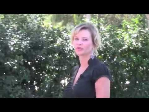 Tampa Video Company SEO, Facebook website video, advertising online