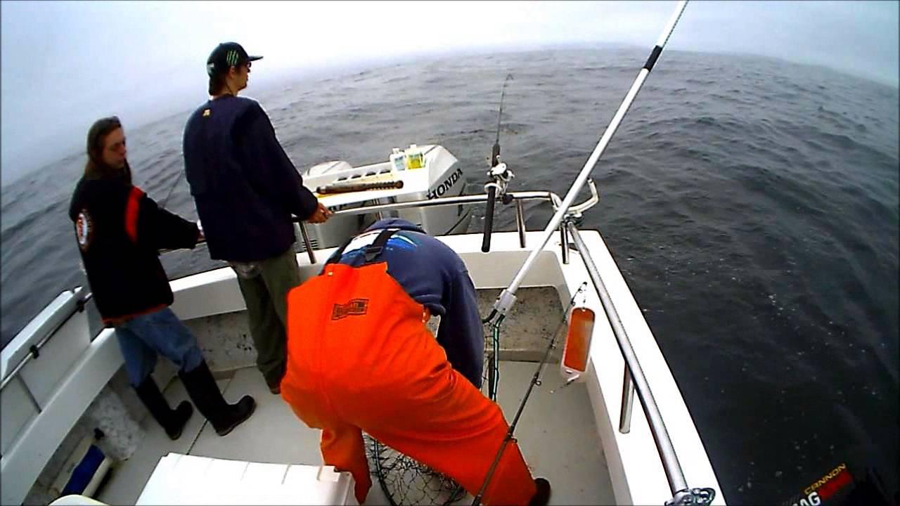 Reel steel fishing eureka youtube for Eureka ca fishing
