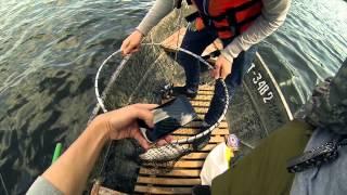 Компанія GoPro: чому чоловіки люблять рибалку?