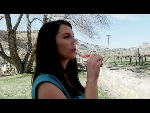 Explore Colorado Palisade Wineries