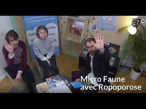 Micro Faune avec Ropoporose