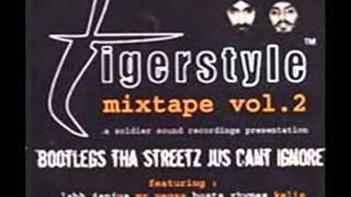 Tigerstyle - Dhol Vajda (Raggatastic Remix)