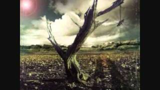 Noctura- Gone away