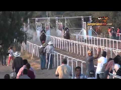 carreras caballo cuarto de milla