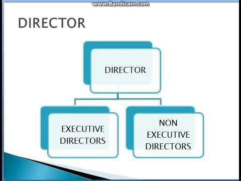 COMPANY MGMT ( DIRECTORS) COMPANY LAW