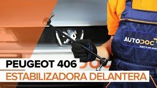 Montaje Bieletas de Suspensión delantera y trasera PEUGEOT 406 (8B): vídeo gratis