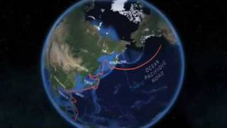 TARA OCEANS, carte 3D