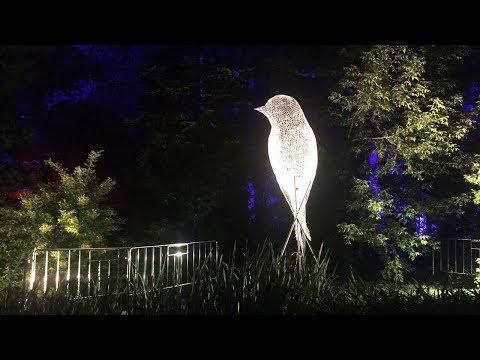 Светящиеся цветы, трехметровые птицы и другие световые инсталляции на Фестивале Вдохновение на ВДНХ
