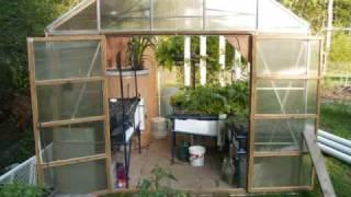 Aquaponics Greenhouse Tour