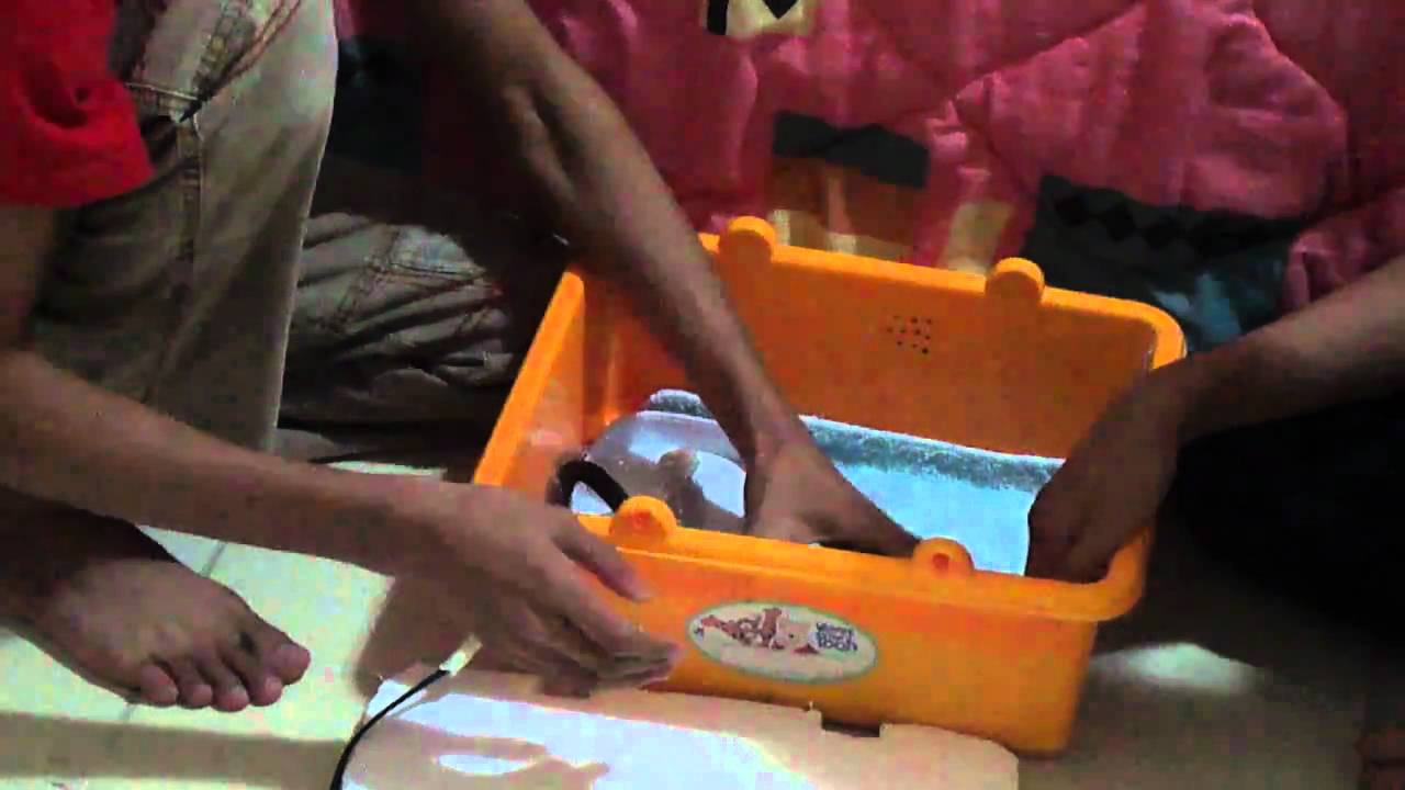 Watch How to Make a Simple Homemade Incubator for Chicks video