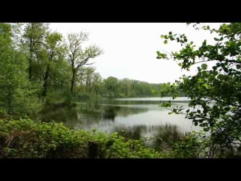 Netherlands: The Venkoelen in the natural area Blackwater (Zwart Water) in Venlo.
