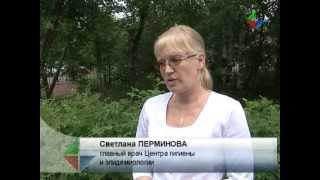 видео Экологические функции почвы
